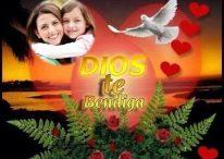 """Fotomontaje de """"Dios te bendiga"""" con palomas y flores"""